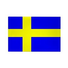 How Swede it is! Rectangle Magnet