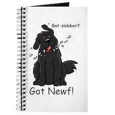 NS - Journal