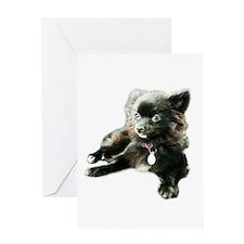 Adorable Black Pomeranian Puppy Greeting Card