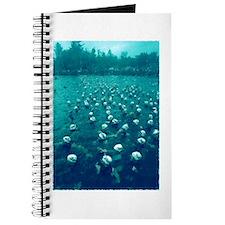 IRONMAN START Journal