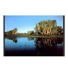 Kakadu National Park Postcards (Package of 8)