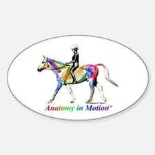Anatomy in Motion Oval Decal