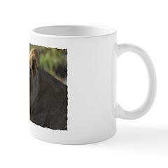 Lion Cub Up Close & Personal Mug