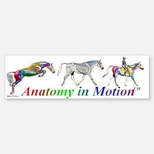 Anatomy in Motion Bumper Bumper Bumper Sticker