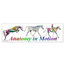 Anatomy in Motion Bumper Bumper Stickers