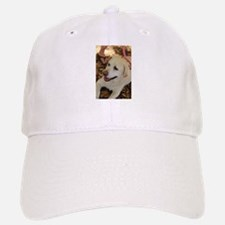 English lab in shade Baseball Baseball Cap