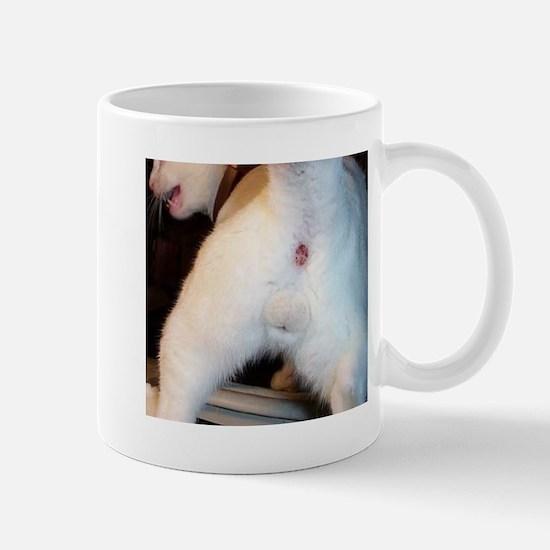 The cat's ass Mug
