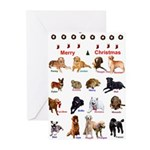 CC Friends Greeting Cards (Pk of 20)