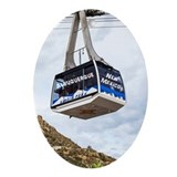 Alburqurque new mexico christmas Oval Ornaments