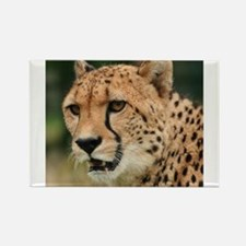 Cheetah Rectangle Magnet