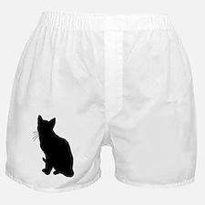 Unique Cat themed Boxer Shorts