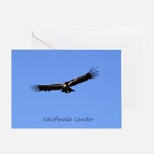 California Condor Greeting Card