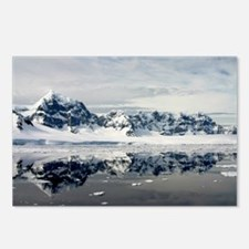 Antarctic Grace Postcards (Package of 8)