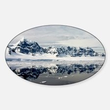 Antarctic Grace Oval Decal