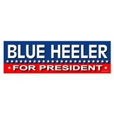 BLUE HEELER Bumper Bumper Sticker