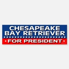 CHESAPEAKE BAY RETRIEVER Bumper Bumper Bumper Sticker