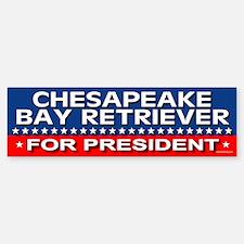 CHESAPEAKE BAY RETRIEVER Bumper Car Car Sticker
