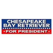 CHESAPEAKE BAY RETRIEVER Bumper Car Sticker