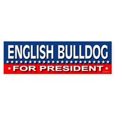 ENGLISH BULLDOG Bumper Bumper Sticker