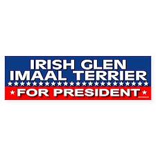 IRISH GLEN IMAAL TERRIER Bumper Bumper Sticker