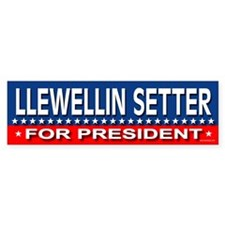 LLEWELLIN SETTER Bumper Bumper Sticker
