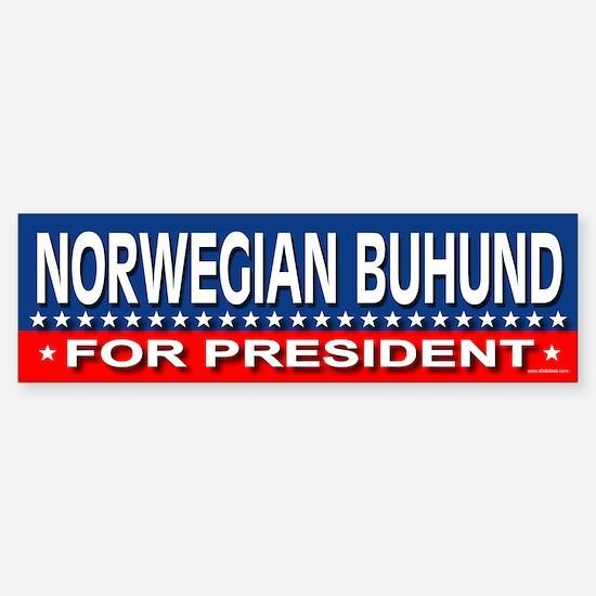 NORWEGIAN BUHUND Bumper Bumper Bumper Sticker