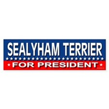 SEALYHAM TERRIER Bumper Car Sticker