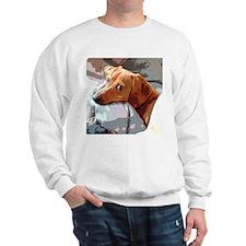 Naptime Alone Doxie Sweatshirt