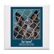 Got Home? Tile Coaster
