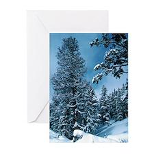 Colorado Blue Greeting Cards (Pk of 10)