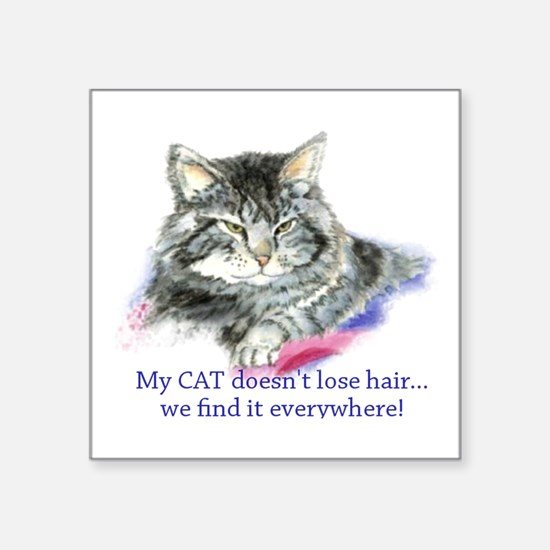 Cat Doesnt Lose Hair Humorous Cat Lover Qu Sticker