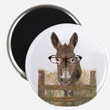 Humorous Smart Ass Donkey Painting Magnets