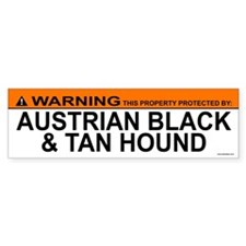 AUSTRIAN BLACK TAN HOUND Bumper Bumper Sticker