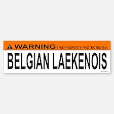 BELGIAN LAEKENOIS Bumper Bumper Bumper Sticker