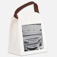 Cute Happi Canvas Lunch Bag