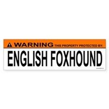 ENGLISH FOXHOUND Bumper Car Sticker