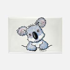 Pocket Koala Rectangle Magnet