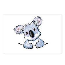 Pocket Koala Postcards (Package of 8)