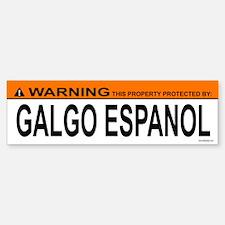 GALGO ESPANOL Bumper Bumper Bumper Sticker