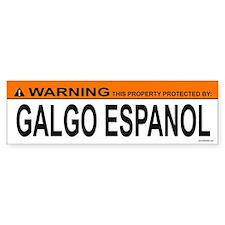 GALGO ESPANOL Bumper Bumper Sticker