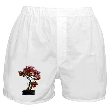 Red Leaf Bonsai Boxer Shorts