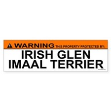 IRISH GLEN IMAAL TERRIER Bumper Bumper Sticker