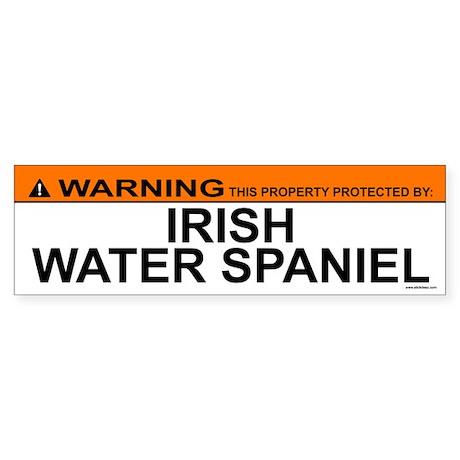 IRISH WATER SPANIEL Bumper Sticker