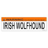 Irish wolfhound Single