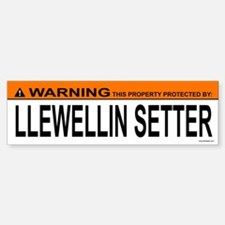 LLEWELLIN SETTER Bumper Bumper Bumper Sticker