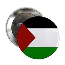 "Palestine 2.25"" Button"