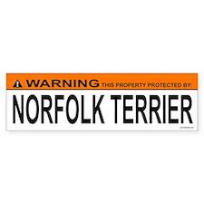 NORFOLK TERRIER Bumper Car Sticker