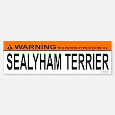 SEALYHAM TERRIER Bumper Car Car Sticker