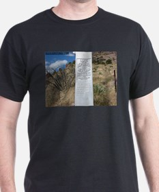 Coronado National Monument 2 T-Shirt