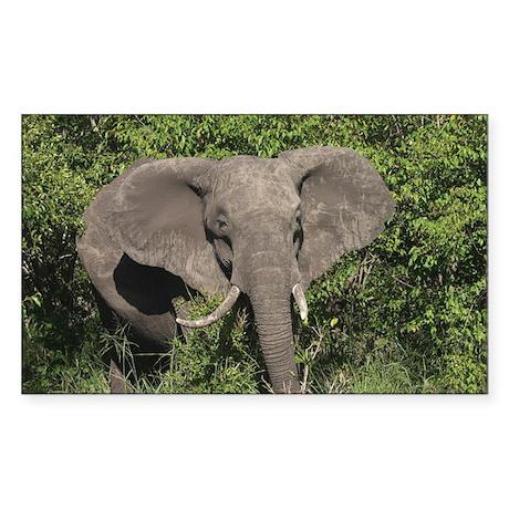 AGGRESSIVE ELEPHANT PREPARES Rectangle Sticker